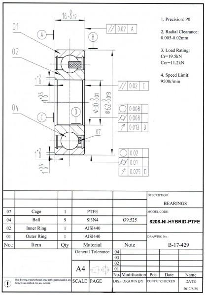 NIRO-Hybridlager 6206-NI-HYBRID-PTFE